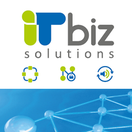 IT biz Solutions